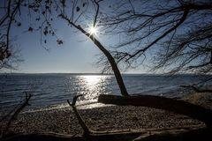 Februar-Sonne