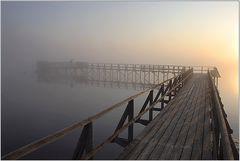 Federsee am frühen Morgen