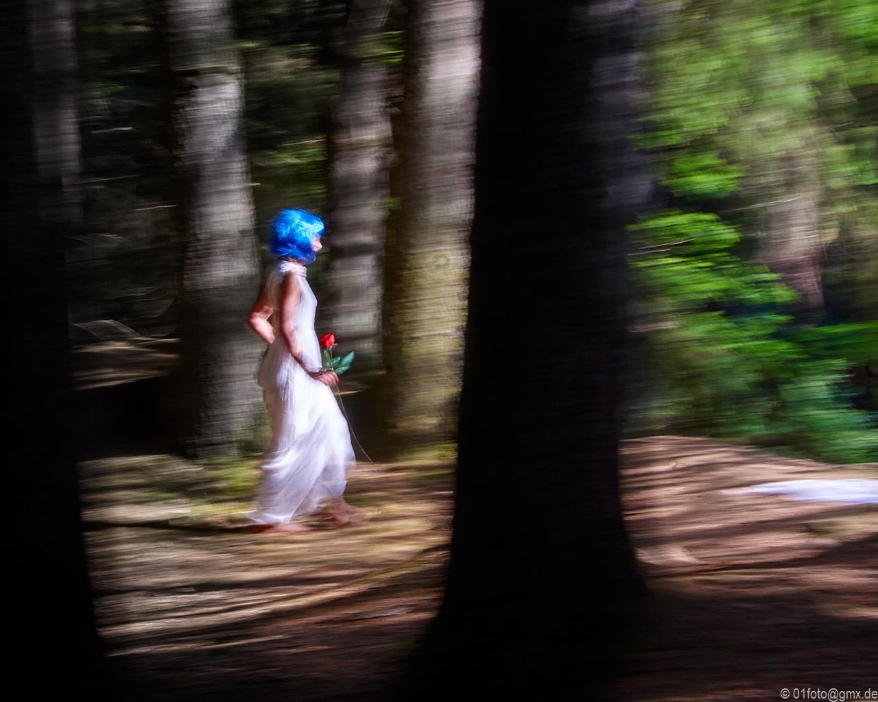 Fee im Wald