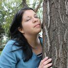 feeling tree