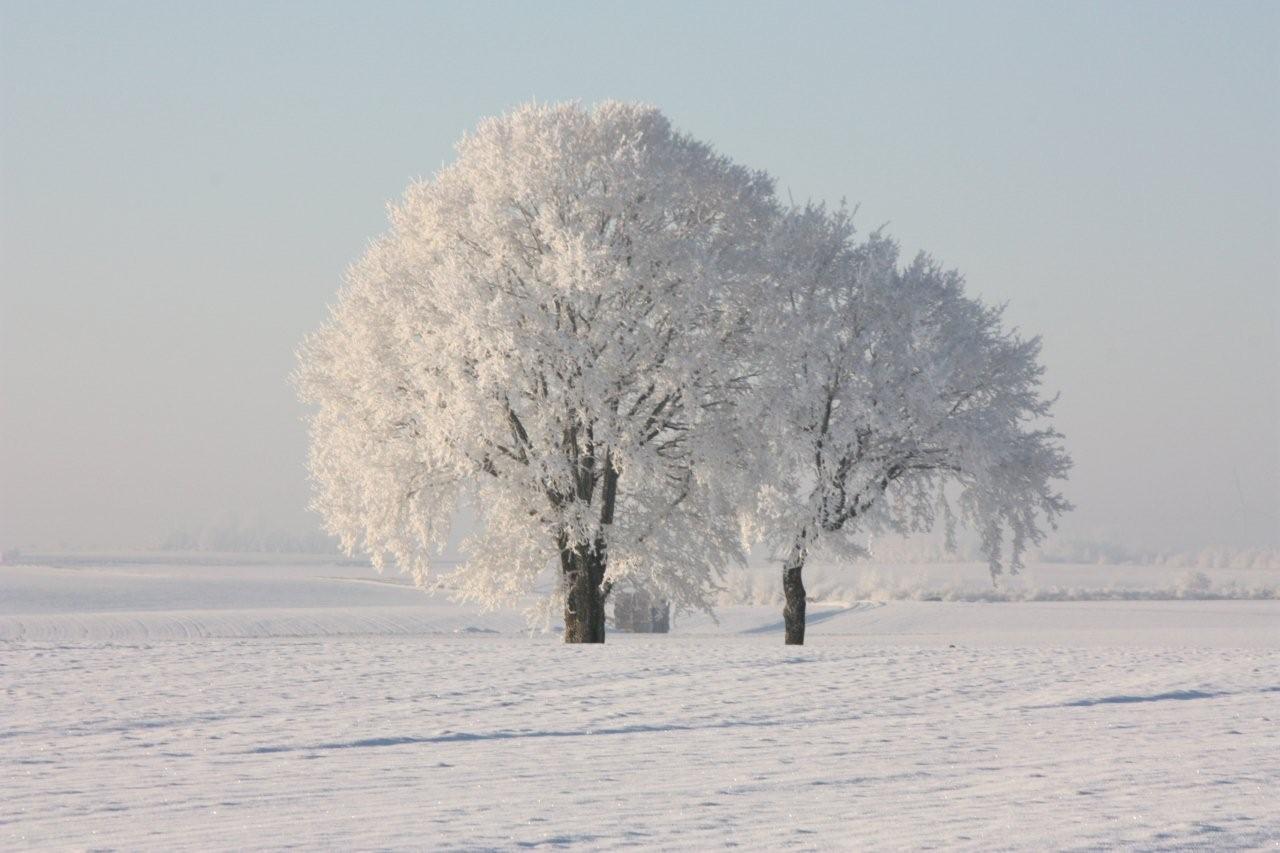 Féerie de l ' hiver !