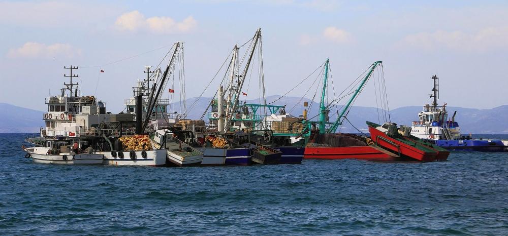 Feierabend im Hafen