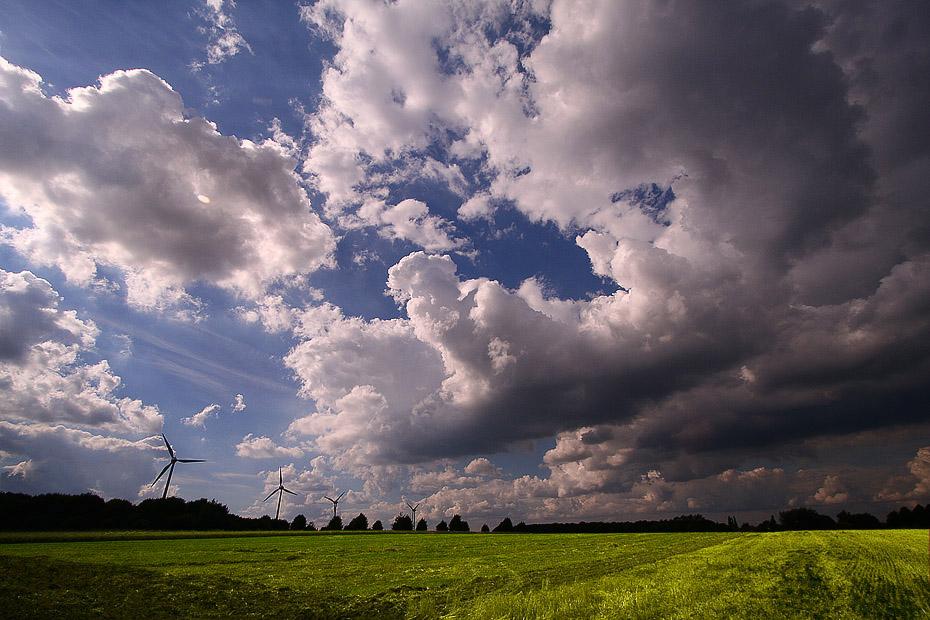 Feld in Oer-Erkenschwick