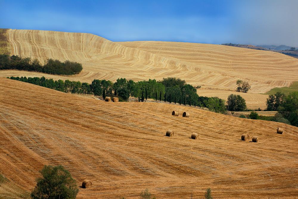 Feld in Siena kurz vor einem Gewitter