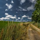 Feld-Wald-Weg
