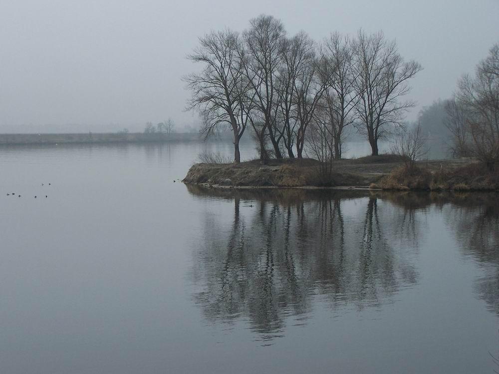 Feldaist zur Donau an einem Februartag