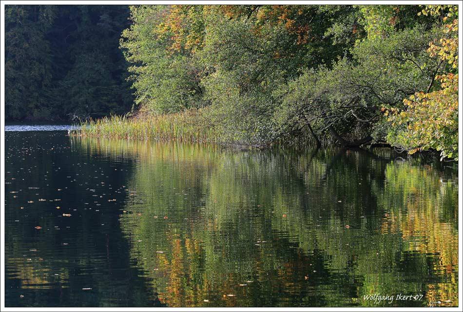 Feldberger Seenlandschaft 1