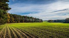 Felder im Herbst