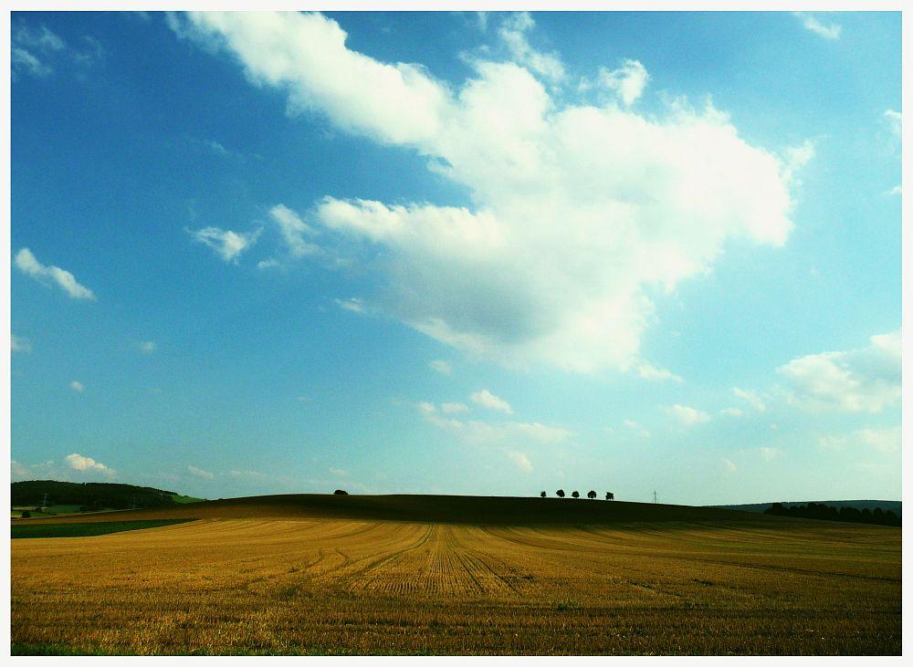 Felder im Weserbergland