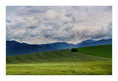 Felder und Berge