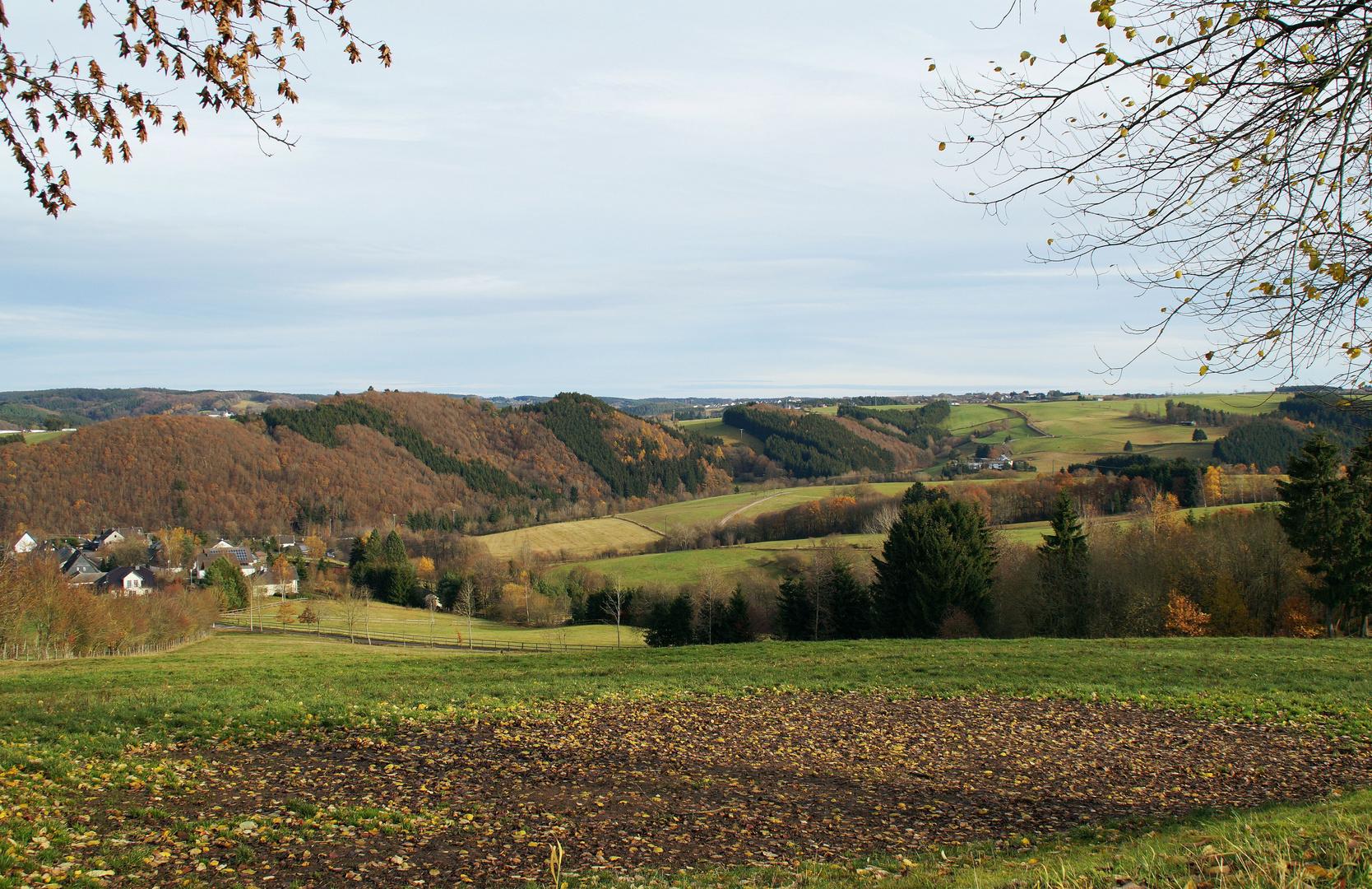 Felder und Wälder im Spätherbst