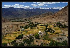 Felder von Likir