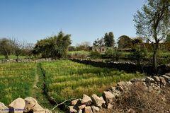Felder zur Bewässerung