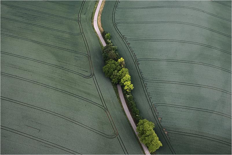 Felderlandschaft in der Bodenseeregion