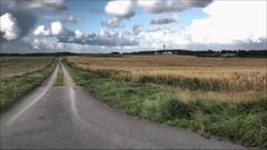 Feldweg-2