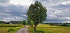 Feldweg am Niederrhein