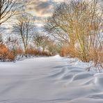 Feldweg im Winter HDR