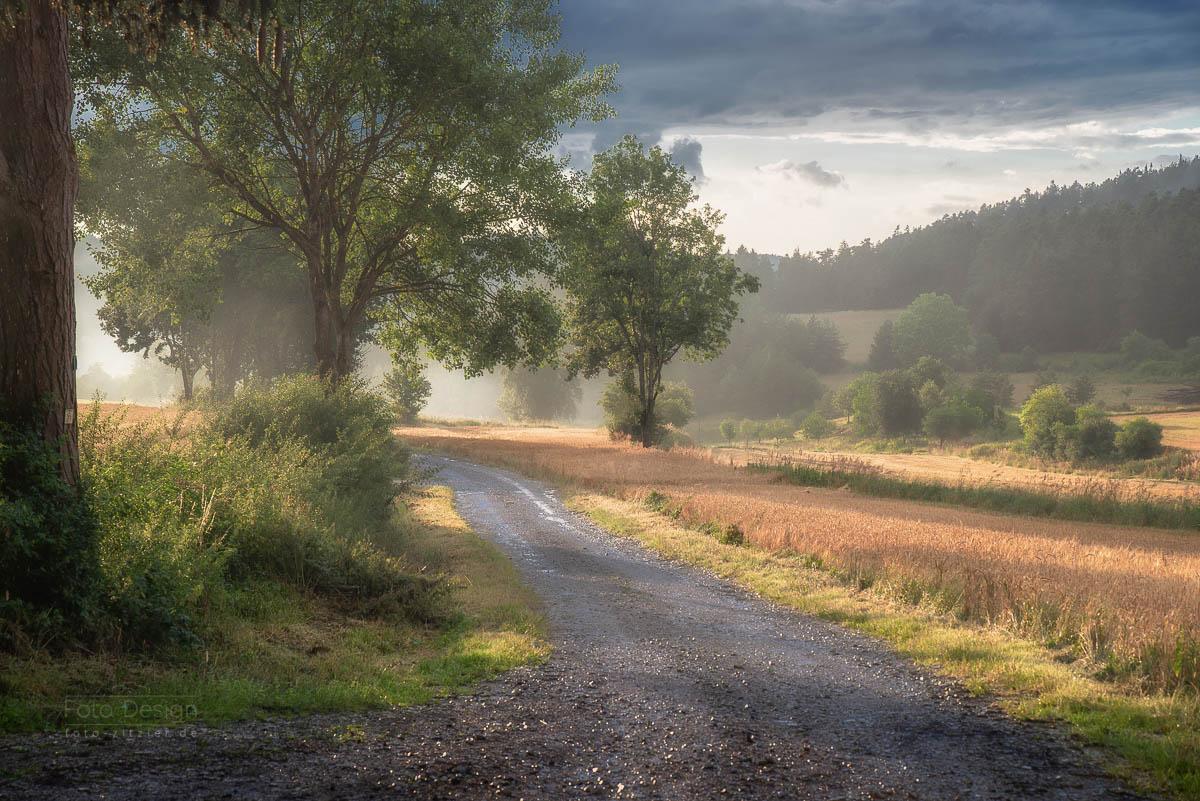 Feldweg nach Sommerregen