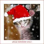 ¡Feliz Navidad 2012!