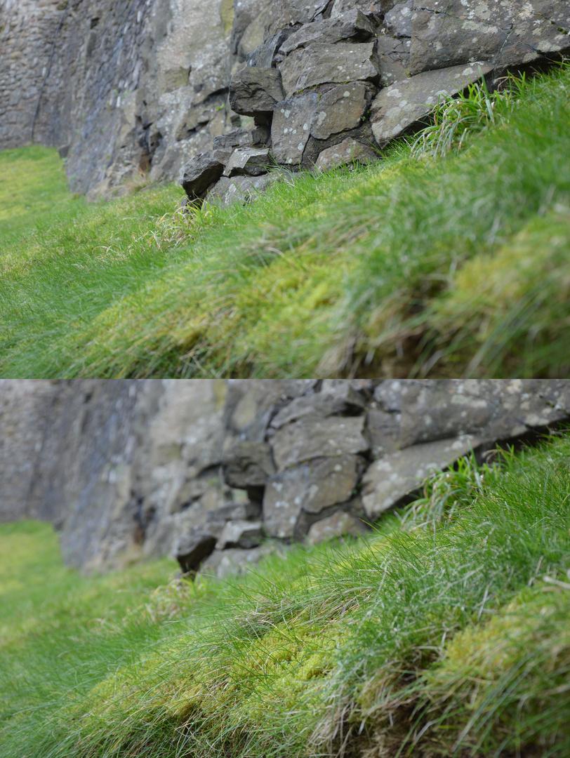 Fels vs. Gras