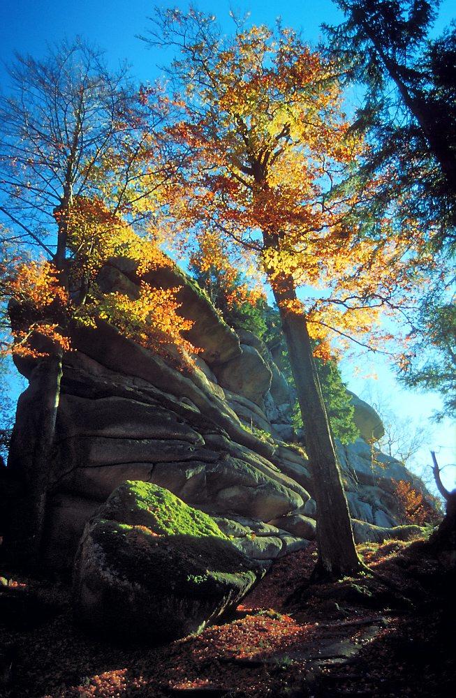 Felsen am Waldstein