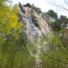 Felsen im Jurawald
