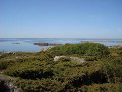 Felsen in blauem und grünem Meer