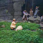 """Felsenbühne Rathen mit einer Szene aus """"Schatz am Silbersee"""""""