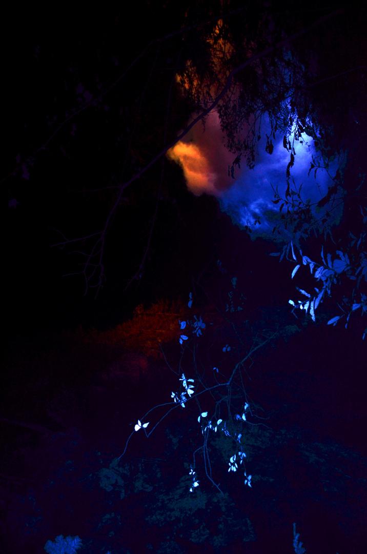 Felsenlicht