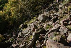 Felsenmeer Jägerfelsen