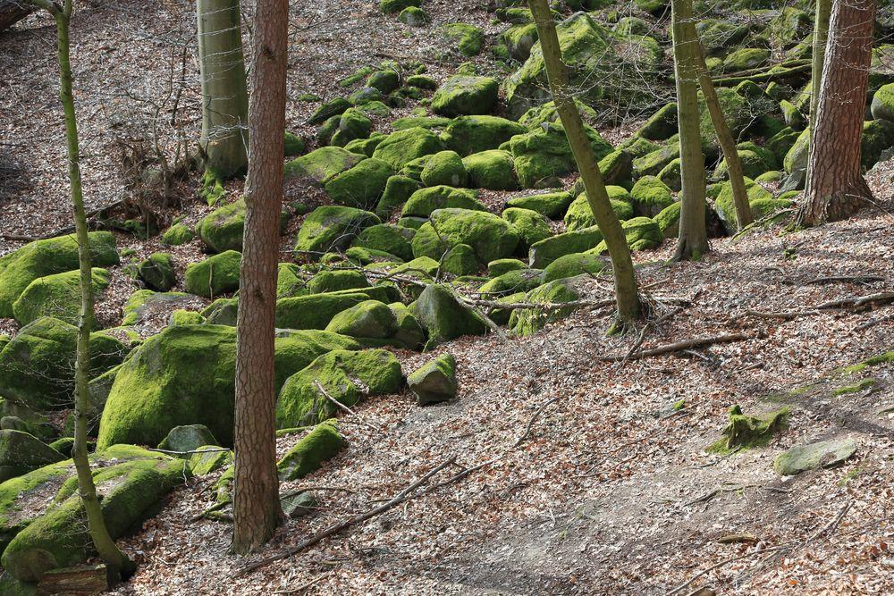 """Felsenmeer"" - Reichenbach / Odenwald"