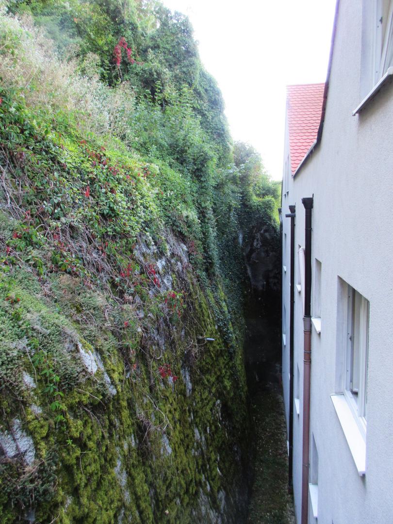 Felsenwastlwirt in Essing