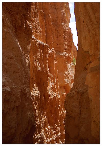 Felsschlucht im Bryce Canyon - Utah, USA