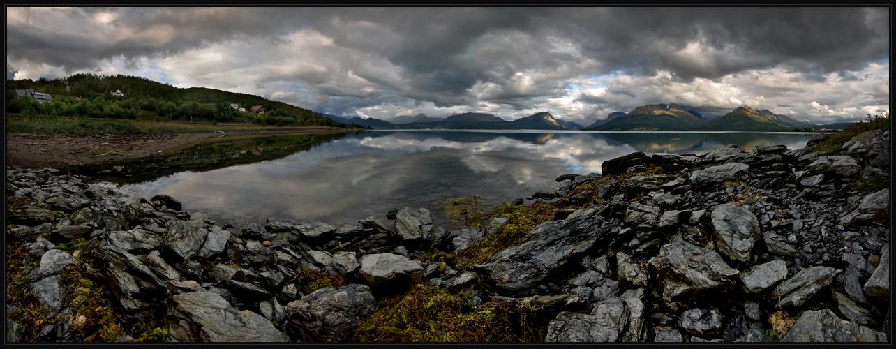 Felsspinat an Spiegelfjord
