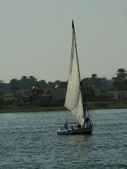 Felukka auf Nil bei Luksor