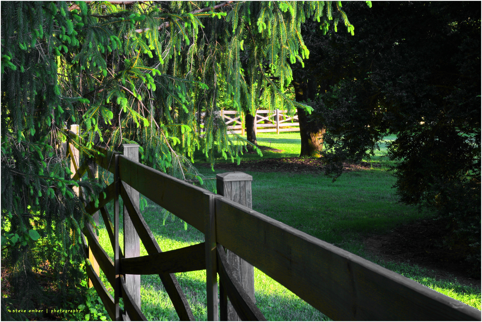 Fences on a Late Afternoon in Spring