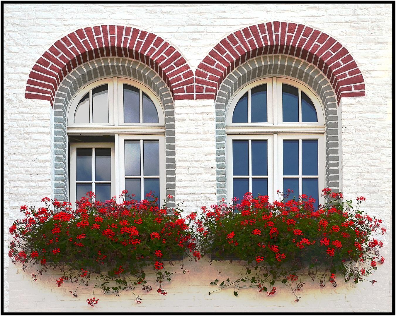 Fenster 2 Foto & Bild | architektur, fenster, blumenkasten Bilder ...