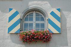 Fenster blau-weiß