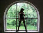--Fenster--
