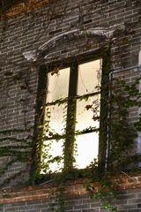 Fenster (I)