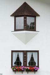 Fenster mit Dach