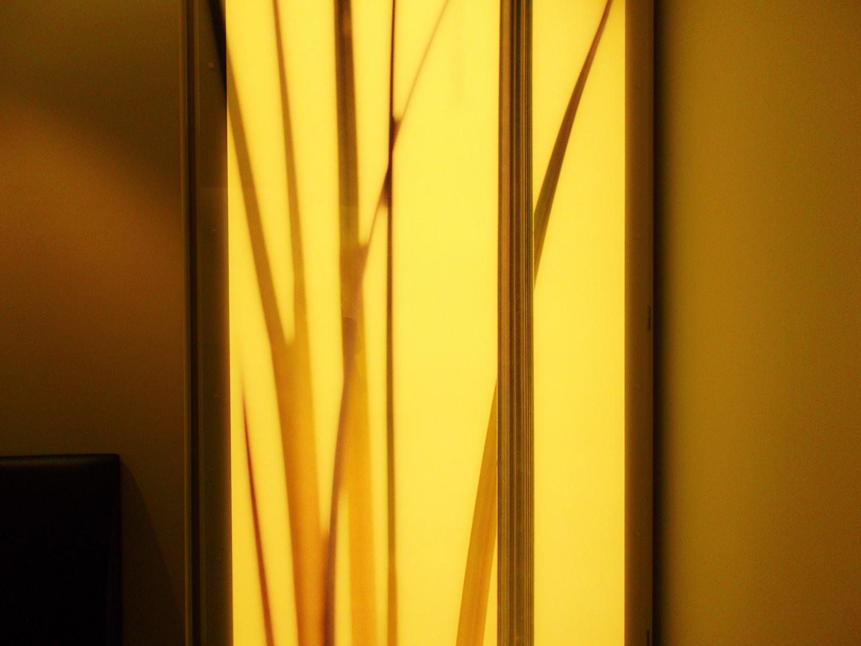 Fenster modern