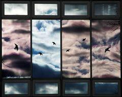 Fenster-Spiegelung.