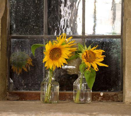 glasflaschen fotos bilder auf fotocommunity. Black Bedroom Furniture Sets. Home Design Ideas