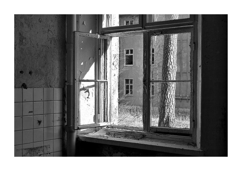Fenster zum Hof...
