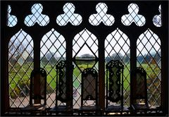Fenster zum Park