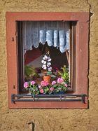 Fensteransichten