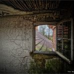 Fensterblick über Salve Mater ...
