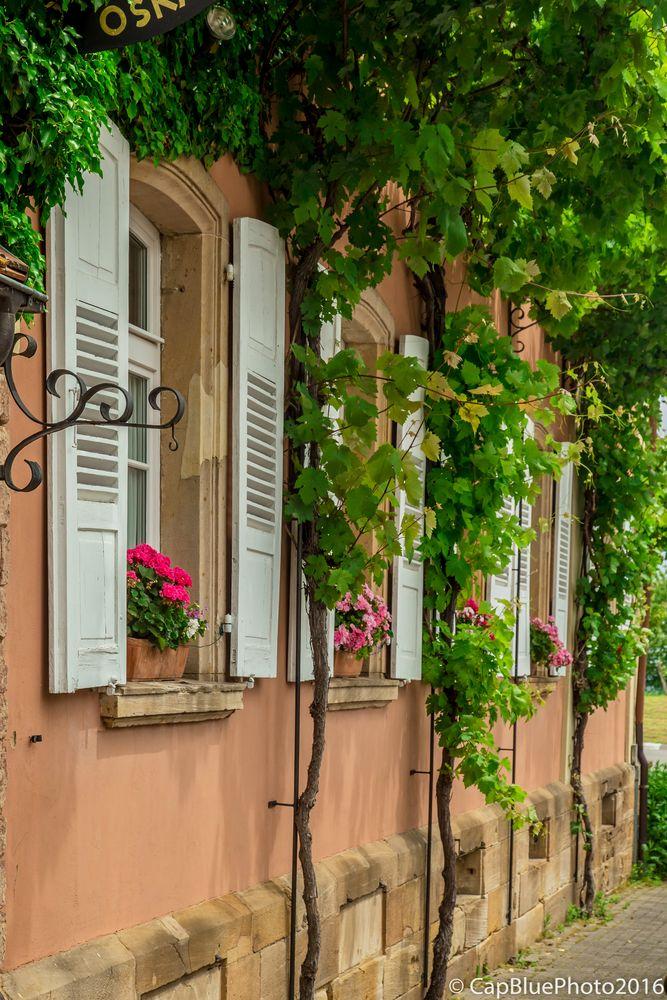 Fensterfront der Weinstube Oskar Jülg Schweigen