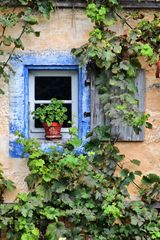 Fenstergeschichten IV